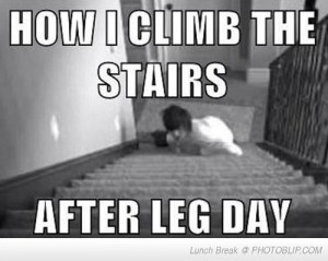 after-leg-day